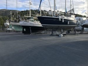The choice of yachts in a yard
